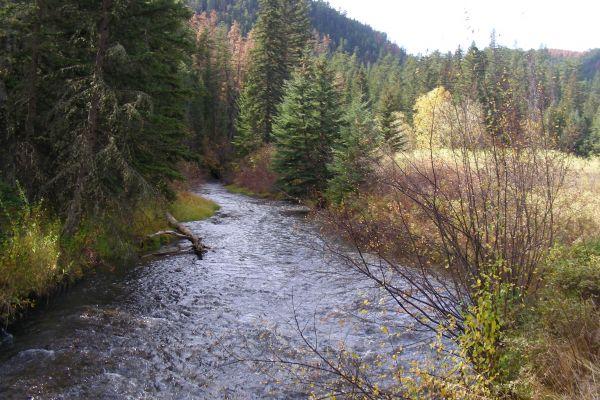 5-autumn-along-the-creek5F5F2DDE-5403-295B-CF80-1BB0281E38A9.JPG