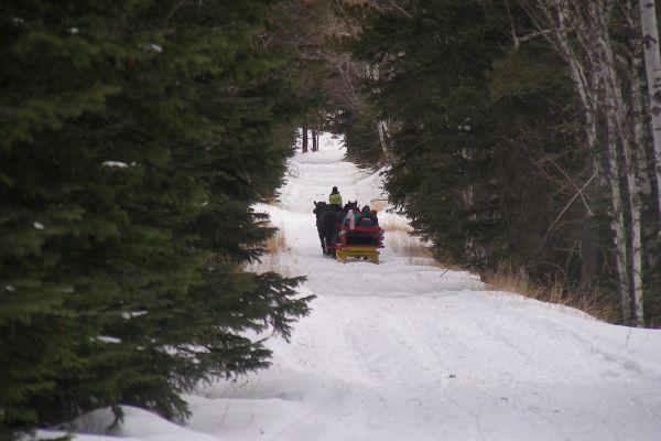 along-the-trail-48FD3A2E7-2323-F90A-A1D0-3F1CAD6B4089.jpg
