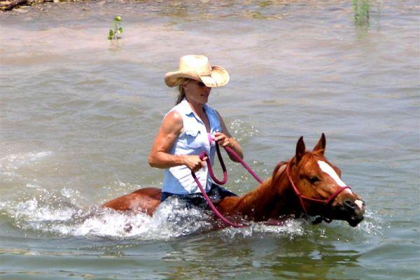 saddle-tramp-16CB720D45-8103-C2BE-F654-2A042AE24A0C.jpg